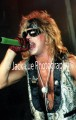 Bret Michaels at the Palace, July 16, 1986 by JACK LUE